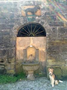 0519grünhundsbrunnen